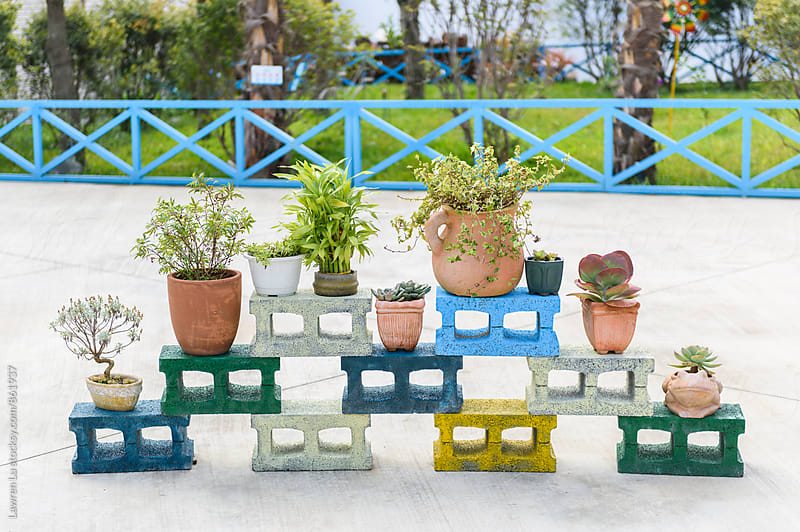 Plants in pot piling on colorful cement bricks in garden by Lawren Lu for Stocksy United
