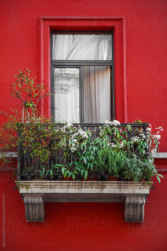 red balcony with green flowers by Sonja Lekovic for Stocksy United