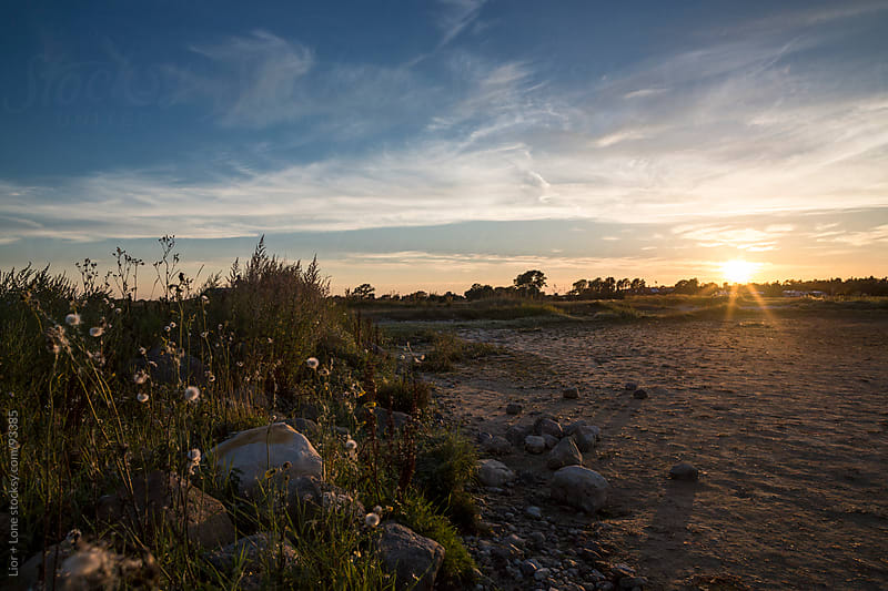 Sunset over a field by sandy beach by Lior + Lone for Stocksy United