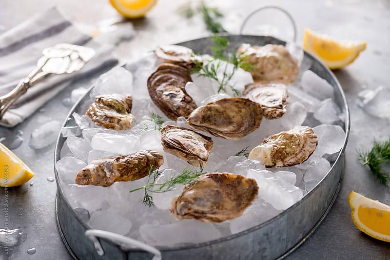Raw Oysters in Metal Tray by Jeff Wasserman for Stocksy United