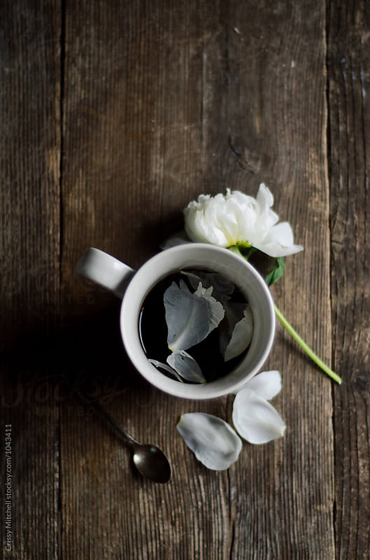 coffee and petals by Crissy Mitchell for Stocksy United