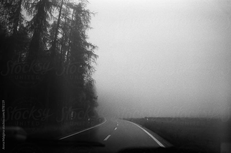 Film photo of a foggy way in the forest by Anna Malgina for Stocksy United