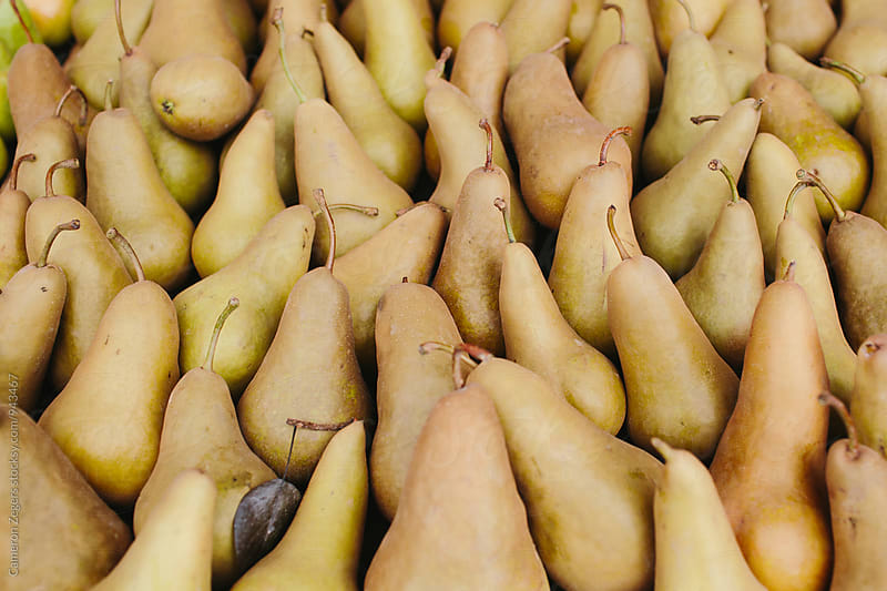many pears at farmers market by Cameron Zegers for Stocksy United