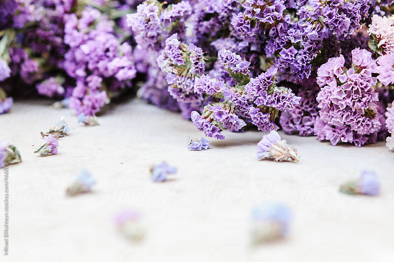 Purple flowers lying on the white counter with small  by Mihael Blikshteyn for Stocksy United