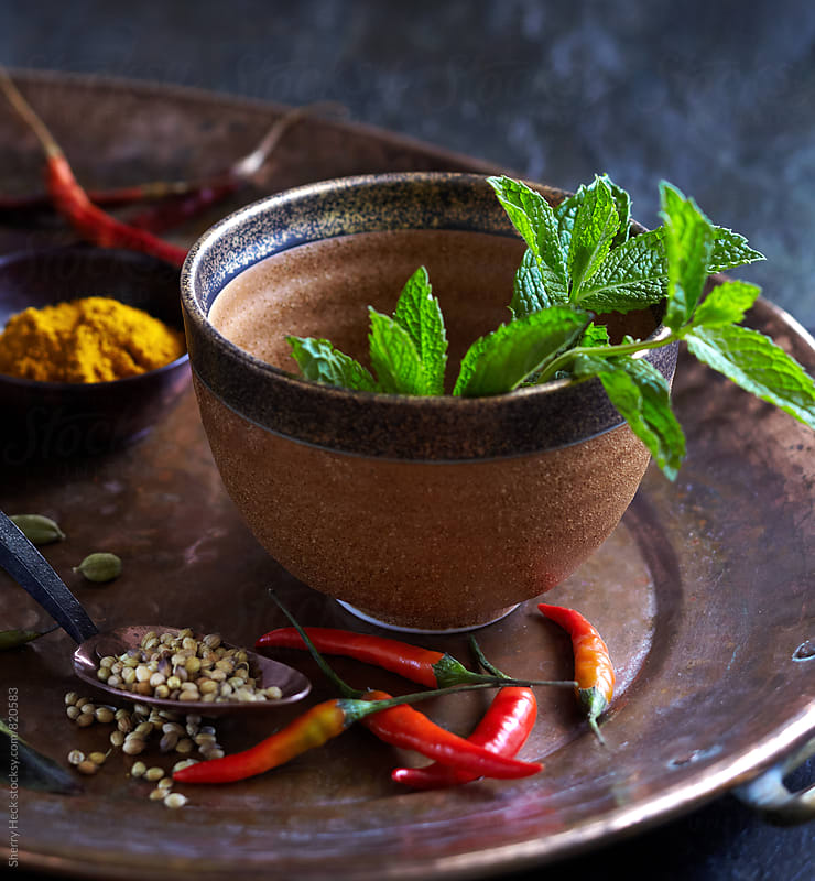 Mint in brown bowl surrounded by dried chilis and other spices by Sherry Heck for Stocksy United