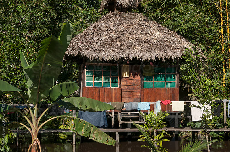 A hut on stilts in the Amazon rain forest. by Mike Marlowe for Stocksy United