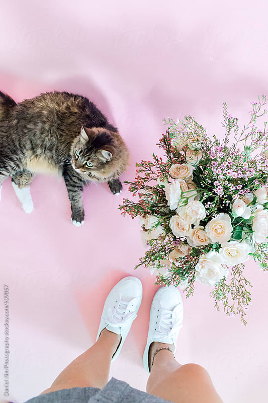 Looking down at feet, flowers, and cat by Daniel Kim Photography for Stocksy United