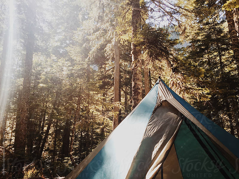 Tent with Sunshine through the Trees by michelle edmonds for Stocksy United