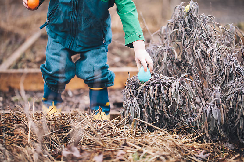 a little boy finding easter eggs during a hunt outside by Sarah Lalone for Stocksy United