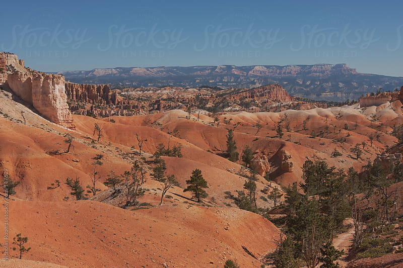 Arid Bryce Canyon Hiking Trail by Nicholas Roberts for Stocksy United