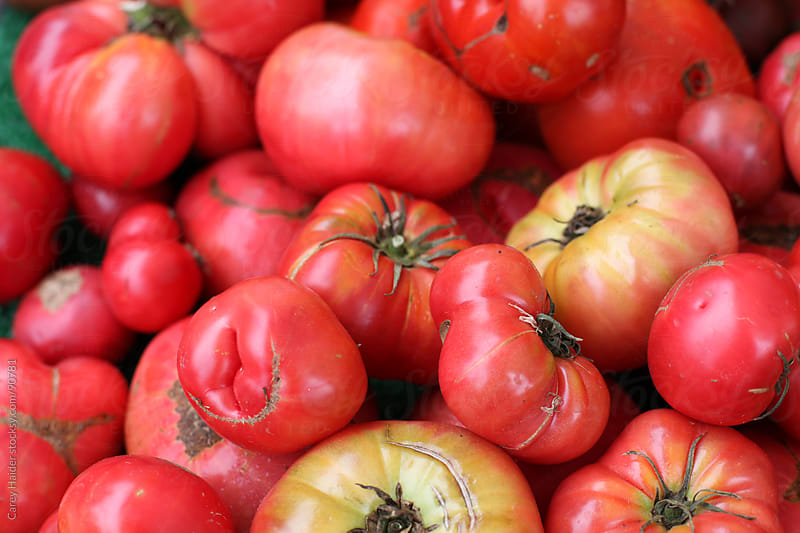 Fresh Organic Red Tomatoes by Carey Haider for Stocksy United