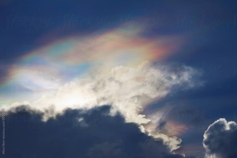 Fire rainbow above the clouds in blue sky by Alice Nerr for Stocksy United