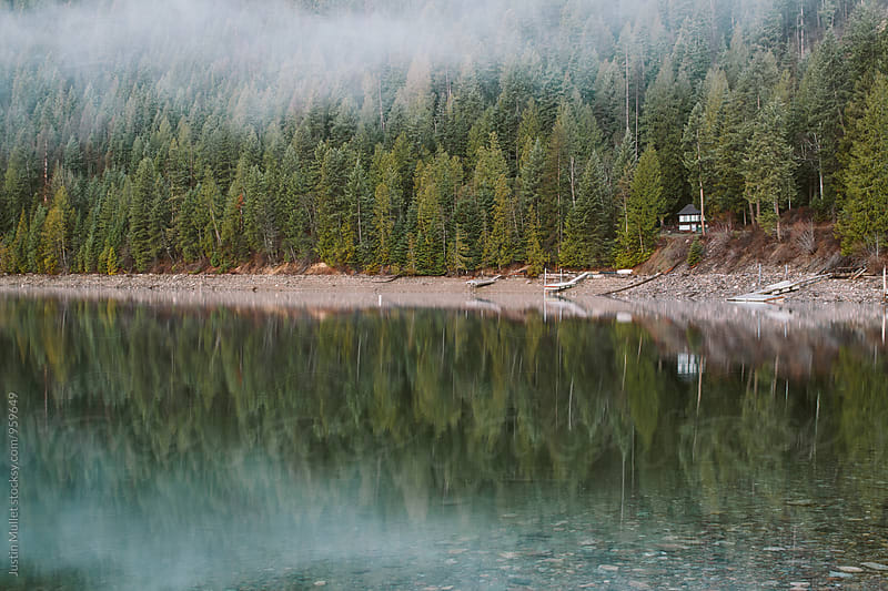 Foggy tree covered shoreline of lake.  by Justin Mullet for Stocksy United