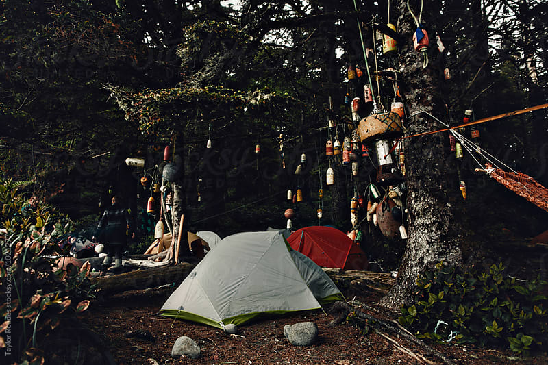 Tent in forest with buoys by Taylor Roades for Stocksy United