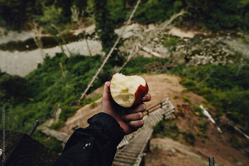 Trail Apple above suspension bridge by Taylor Roades for Stocksy United