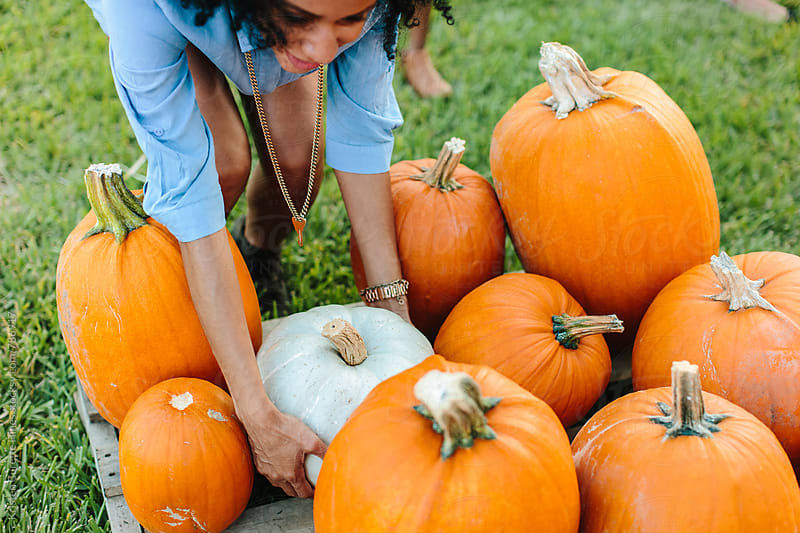 A woman picking up a white pumpkin from a patch by Kristen Curette Hines for Stocksy United