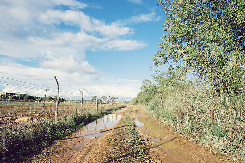 Dirt road in majorcan back country by Urs Siedentop & Co for Stocksy United