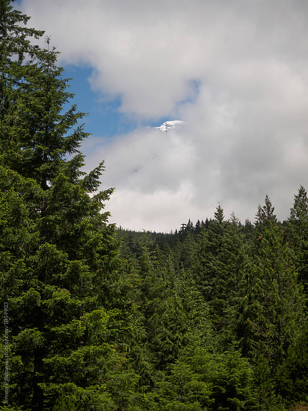 Snowy top of Mt. Rainier peaking out through clouds in Washington by Jeremy Pawlowski for Stocksy United