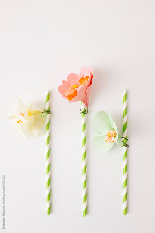 Flower Decoration for Party Straws   by Katarina Radovic for Stocksy United