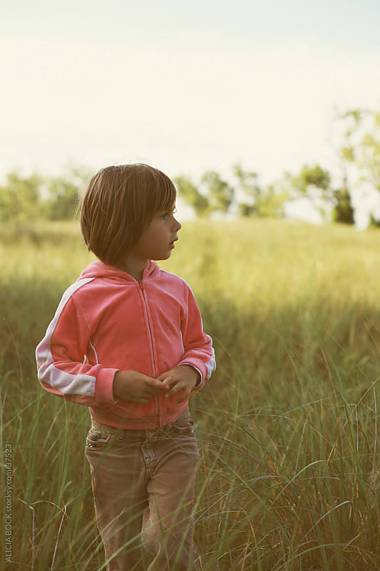 In The Tall Grass by ALICIA BOCK for Stocksy United