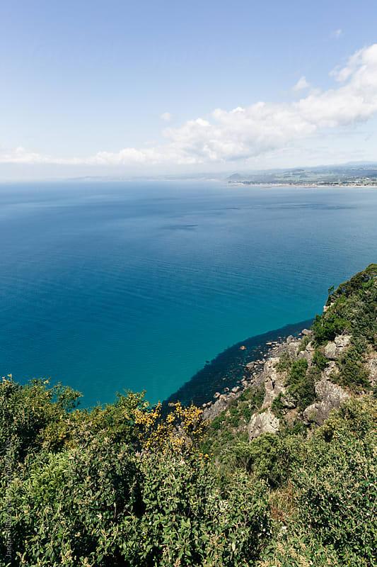 View from Table Cape toward Wynyard, Tasmania, Australia by Jacqui Miller for Stocksy United