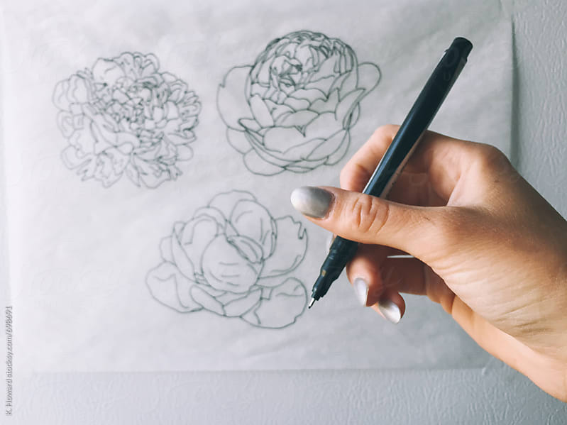 Drawing Peonies. by K. Howard for Stocksy United
