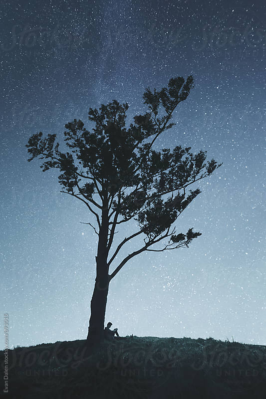 Man Sitting Under Tree On Hill with Stars by Evan Dalen for Stocksy United