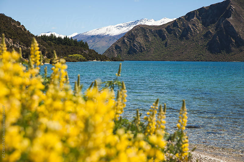 The clear waters of Clutha River near Wanaka, New Zealand. by RZ CREATIVE for Stocksy United