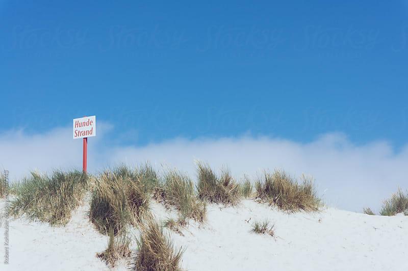 Dog beach sign by Robert Kohlhuber for Stocksy United