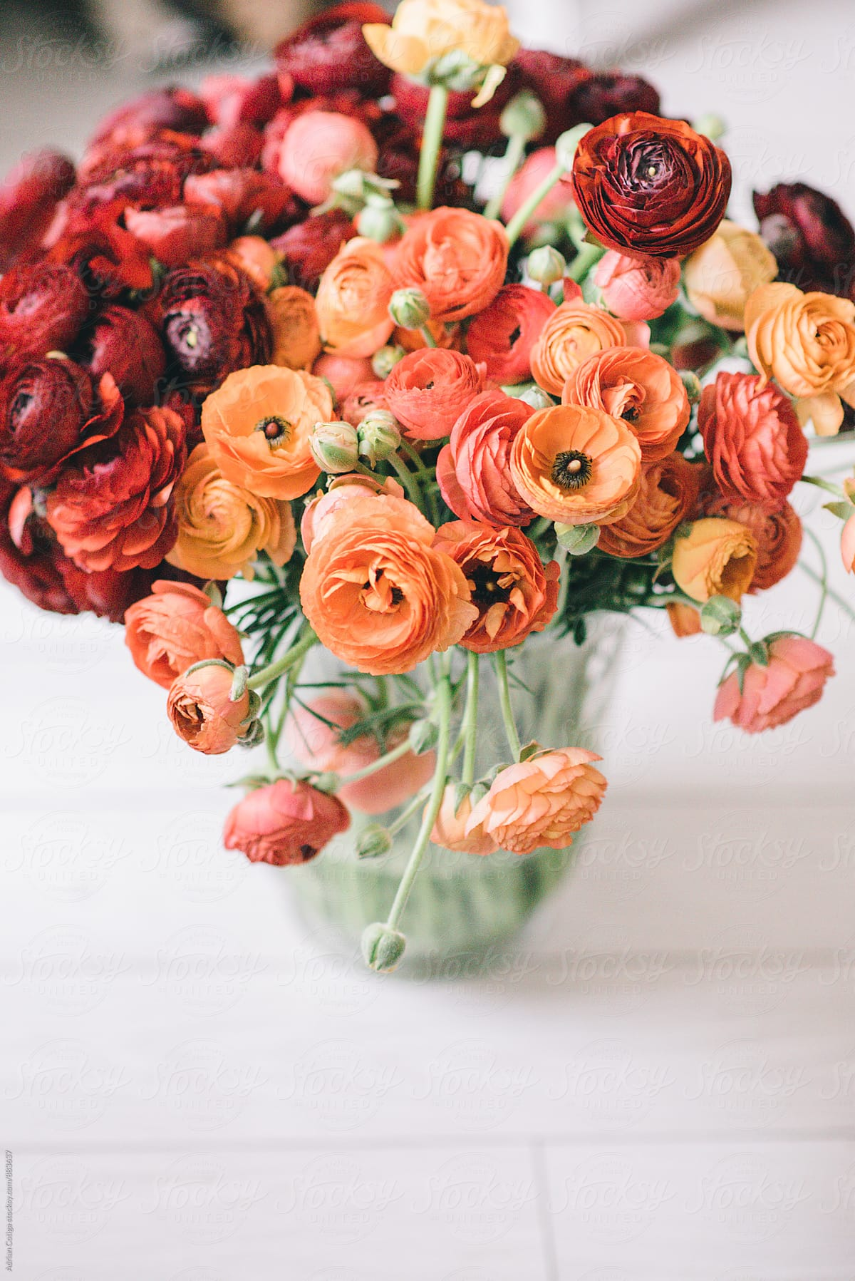 Spring Flowers Bouquet With Orange And Red Ranunculus Stocksy United