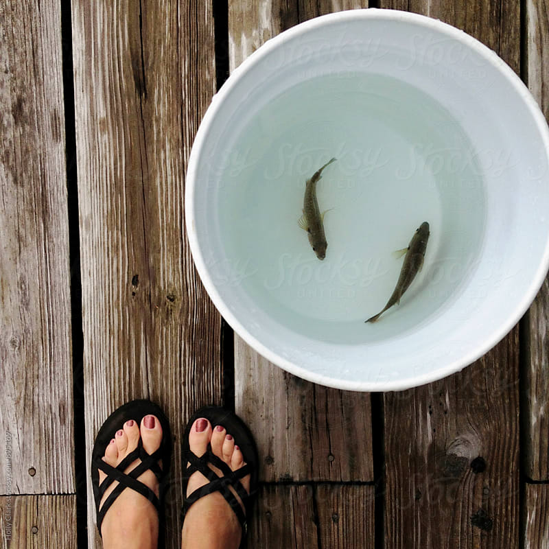 Woman's feet next to bucket with two fish  by Holly Clark for Stocksy United