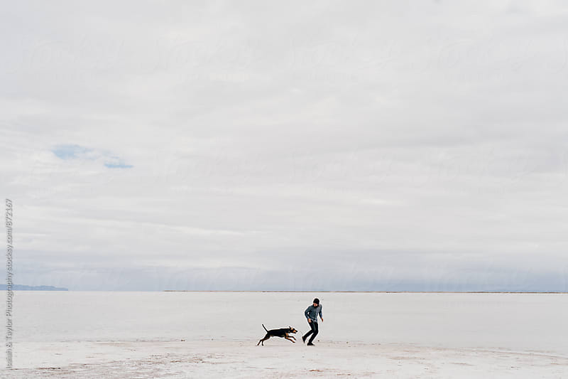Man and Dog Playing by Isaiah & Taylor Photography for Stocksy United