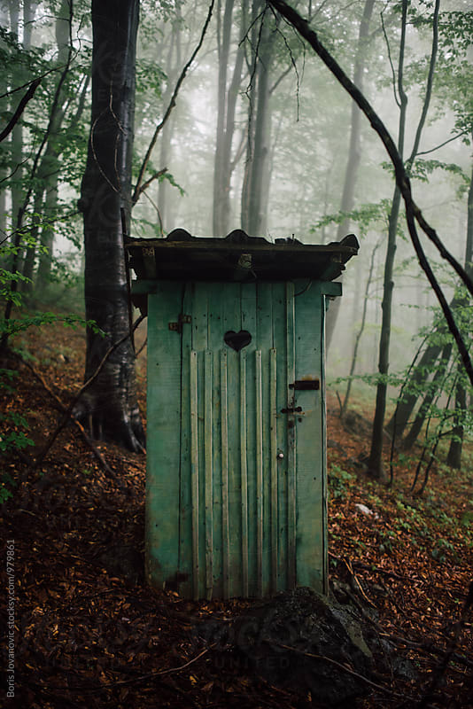Old wooden toilet deep in the woods3 by Boris Jovanovic for Stocksy United