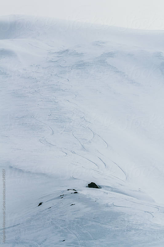 Ski and snowboard tracks on fresh snow. Freeride - heliski by Alejandro Moreno de Carlos for Stocksy United