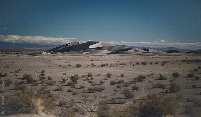 Sand dunes in the desert with tire tracks by Rachel Bellinsky for Stocksy United