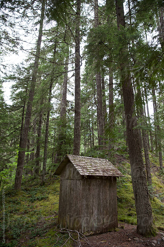 Lonely Cabin by Carey Haider for Stocksy United