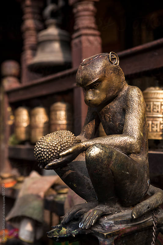 Statue of a monkey with a jackfruit on his hands. by Shikhar Bhattarai for Stocksy United