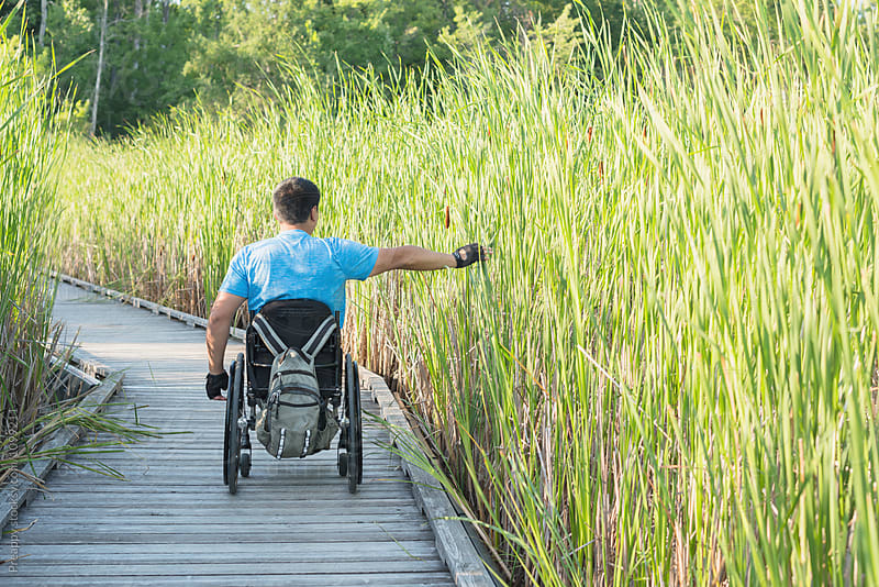 Man in wheel chair explore nature on guided trail by Preappy for Stocksy United