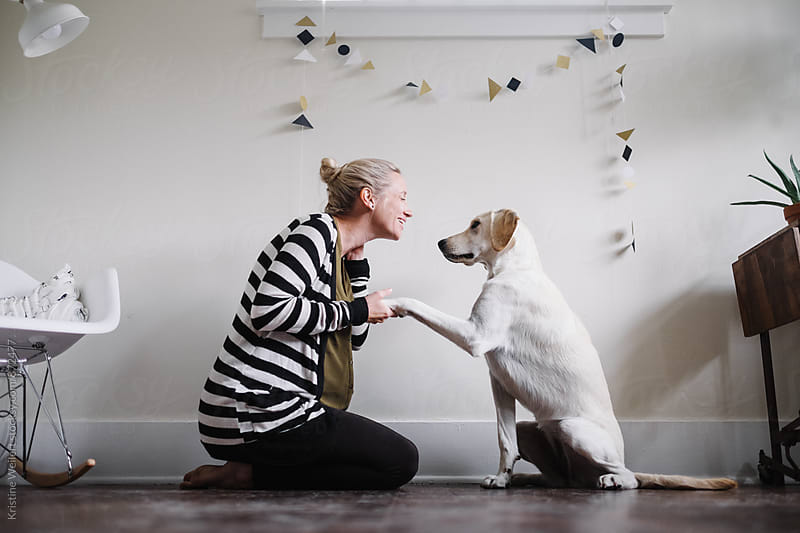 White dog shaking with her owner by Kristine Weilert for Stocksy United
