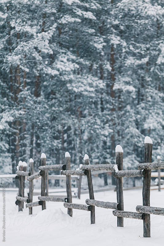 Winter / Wooden Fence by Borislav Zhuykov for Stocksy United