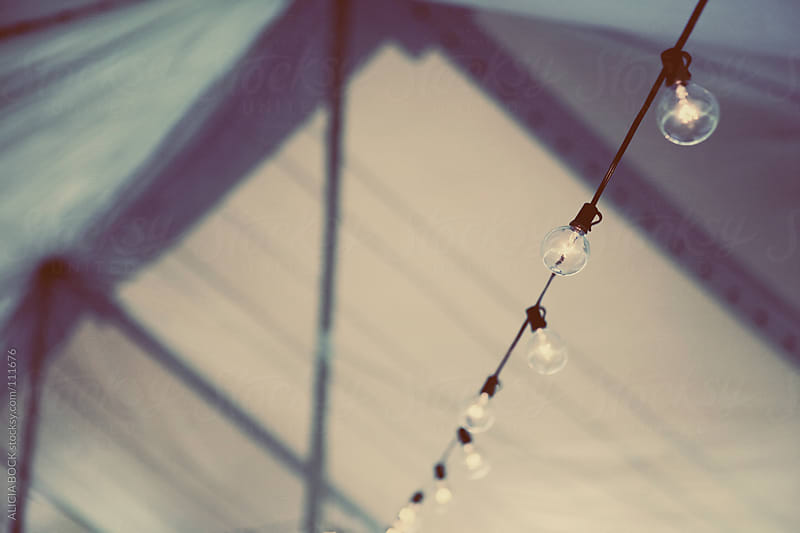String Lights Under The Tent by ALICIA BOCK for Stocksy United