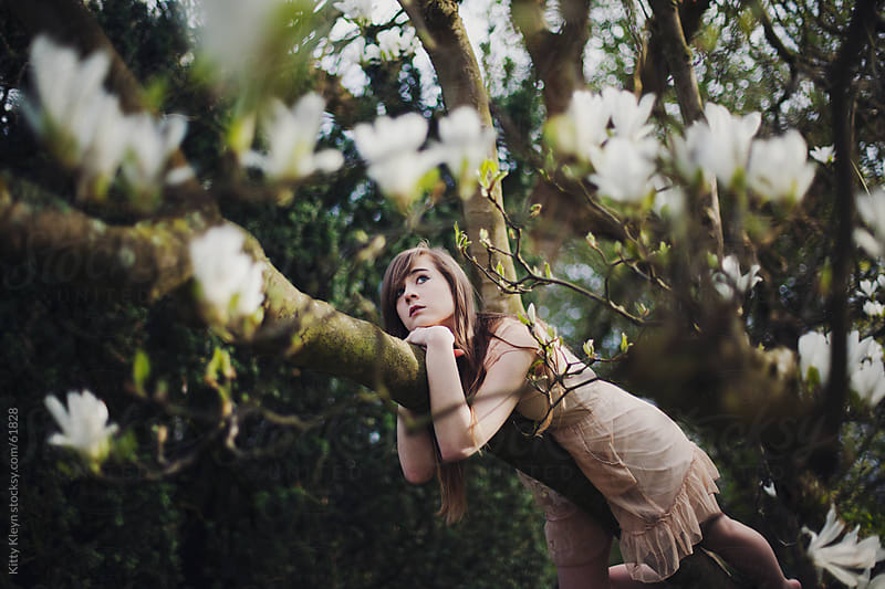 Girl daydreaming in a magnolia tree by Kitty Kleyn for Stocksy United