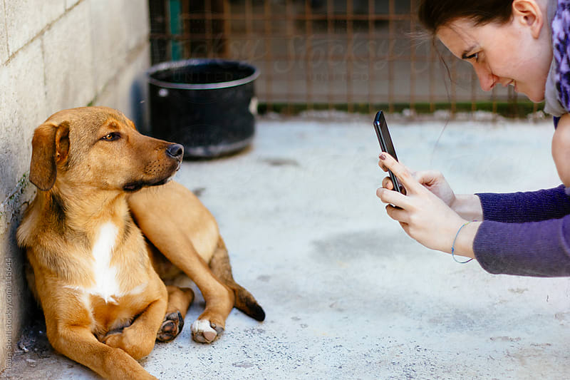 Girl smiles while taking a picture of a dog in front of her with her phone by Laura Stolfi for Stocksy United