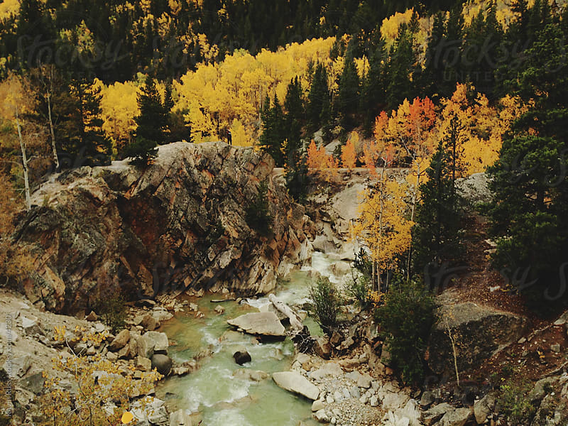 Autumn Colors Creek by Kevin Russ for Stocksy United
