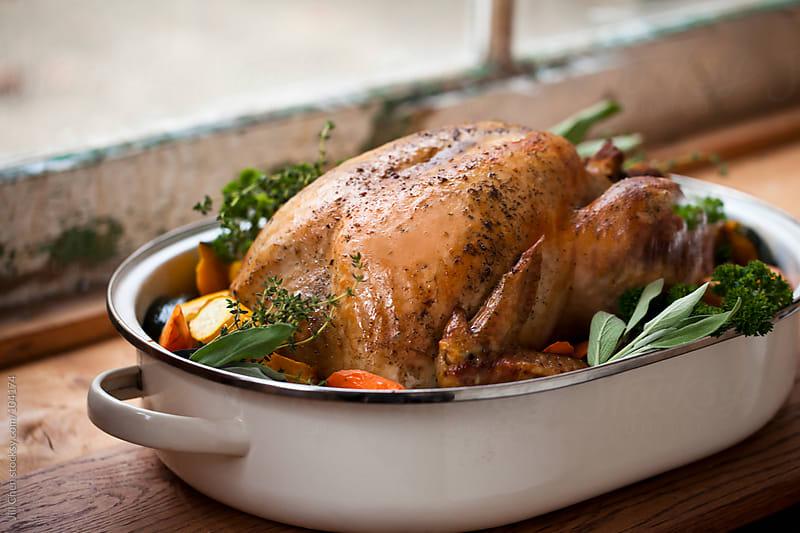 Roast Turkey by Jill Chen for Stocksy United