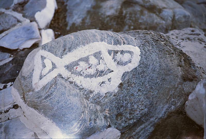 Greek Fish by Skyler Dahan for Stocksy United