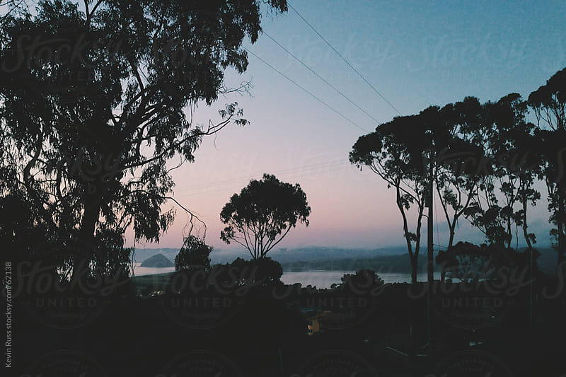 Morro Bay Sunset Through the Trees by Kevin Russ for Stocksy United