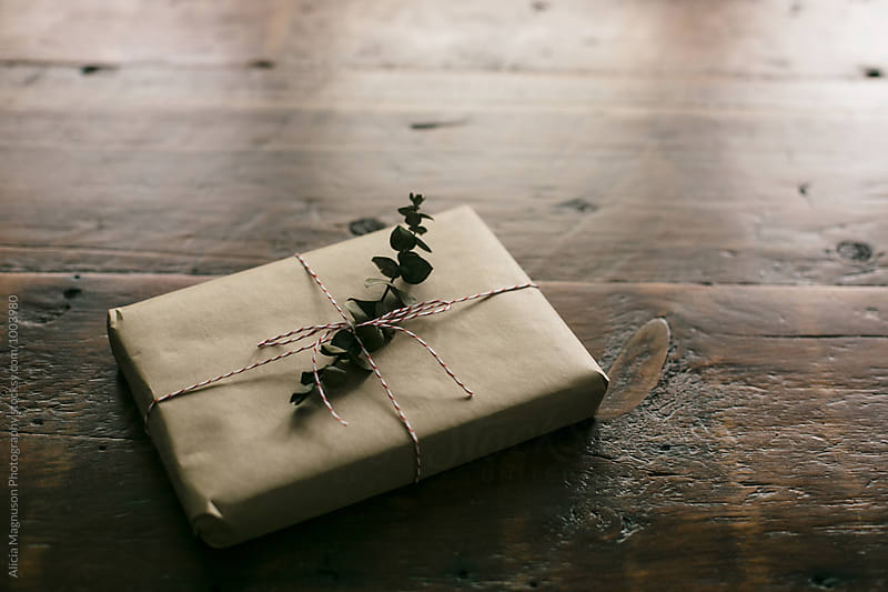 Kraft Paper Gift by Alicia Magnuson Photography for Stocksy United