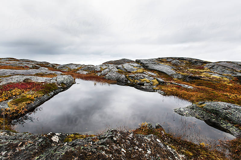 A calm pond by the coast in northern Norway by Jonatan Hedberg for Stocksy United