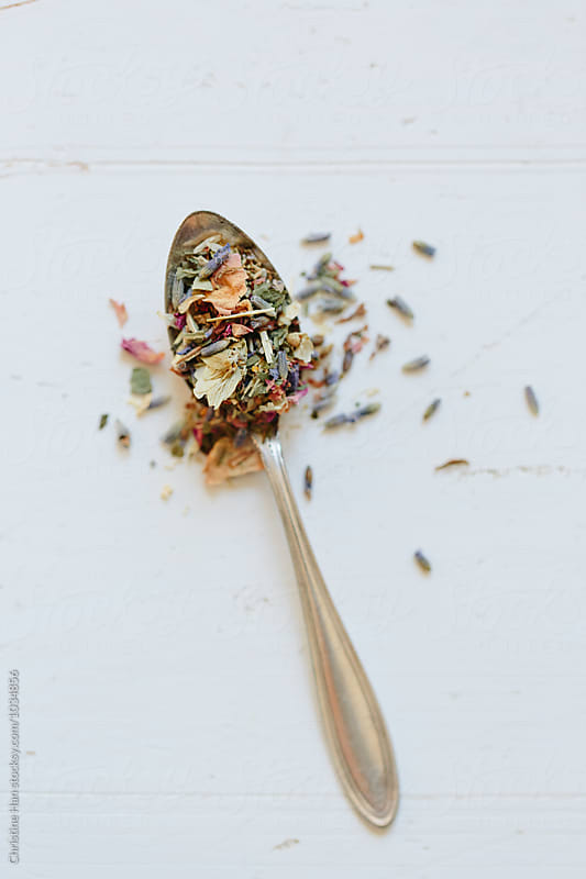 a spoonful of tea by Christine Han for Stocksy United